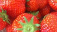 Jordgubbar är något av det bästa jag vet. Igår köpte vi hem en låda. Hur äter ni era jordgubbar?? Vi hade kesella till våra, köpte hem kesella vanilj och kesella […]